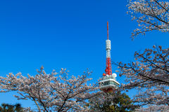 Torre de Utsunomiya Imagem de Stock