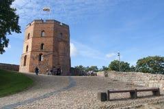 Torre de Vilnius Fotos de Stock Royalty Free
