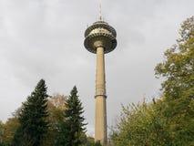 Torre del aeropuerto entre abetos verdes foto de archivo