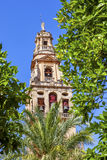 Torre del Aliminar Tower Trees Mezquita Cordoba Spain Royalty Free Stock Photography