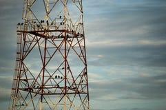 Torre del buitre Fotos de archivo libres de regalías