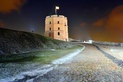 Torre del castillo de Gediminas en la colina en Vilna Foto de archivo libre de regalías