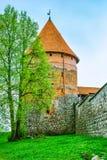 Torre del castillo. Trakai, Lituania fotos de archivo libres de regalías