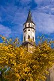 Torre del centro de ciudad de Levoca Imagenes de archivo