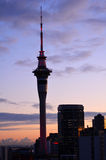 Torre del cielo de Auckland en salida del sol Fotos de archivo libres de regalías