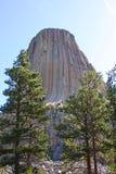 Torre del diablo a través de árboles Imagen de archivo