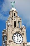 Torre del edificio del hígado Foto de archivo libre de regalías