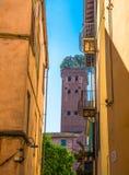 Torre del ladrillo de Torre Guinigi con los robles en la opinión del tejado abajo de la calle estrecha en centro histórico de la  fotos de archivo libres de regalías