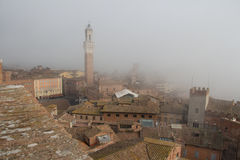 Torre del Mangia在Piazza del园地和锡耶纳tupical ref屋顶薄雾的托斯卡纳,意大利 免版税库存图片