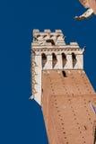 torre del mangia стоковое изображение rf