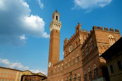 Torre del Mangia - Siena. Piazza del campo in Siena Tuscany, Italy Royalty Free Stock Photo