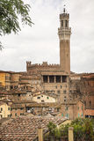 The Torre del Mangia Stock Images