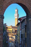 Torre del Mangia - Siena. Torre del Mangia seen from a distance through an arch - Siena, Italy royalty free stock photos