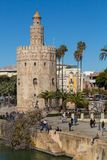 Golder tower on the river banks under a blue sky. Torre del oro english translation golden tower amazing tower open for tourists on the banks of the river stock images