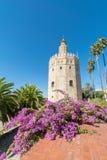 Torre del Oro in Sevilla stock foto
