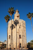 Torre del Oro in Sevilla royalty free stock photos
