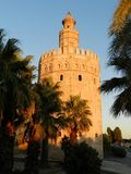 Tower of Gold, Seville, Andalusia, Spain. Palm trees and sunset light, blue sky, sunny day. Torre del Oro, Sevilla, Andalucia, Spain. Sunset and reason for its stock photography