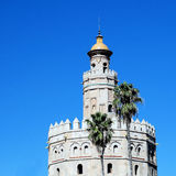 Torre del Oro Seville. Torre del Oro in Seville (Spain) with two palm trees in front against a clear blue sky royalty free stock photos