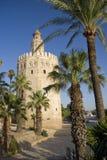 Torre del Oro, Siviglia Immagini Stock Libere da Diritti