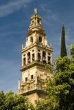Torre del palacio del Mesquite Imagen de archivo libre de regalías