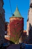 Torre del polvo de Riga Imagen de archivo libre de regalías