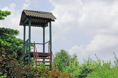 Torre del reloj en bosque Foto de archivo
