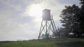 Torre del reloj del pájaro almacen de metraje de vídeo