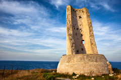 Torre del Serpe 免版税库存照片