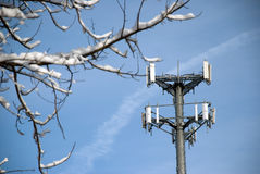 Torre del teléfono celular enmarcada por Nevado Branch Fotografía de archivo