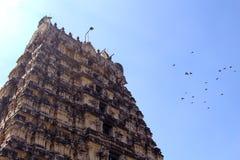 Torre del templo de Jalakandeswarar con el cielo Imagenes de archivo