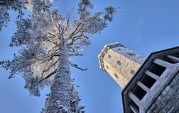 Torre dell'allerta di Aulanko Immagini Stock Libere da Diritti