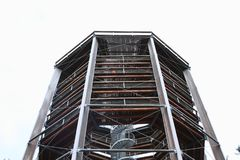 Torre dell'allerta di Lipno degli alberi della traccia Immagine Stock