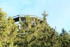 Torre dell'allerta di Lipno degli alberi della traccia Fotografie Stock