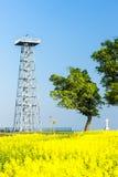 Torre dell'allerta, Novy Poddvorov Fotografia Stock Libera da Diritti