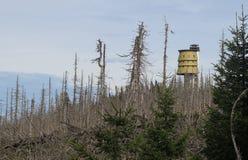 Torre dell'allerta sulla cima di Polednik nel parco nazionale di Sumava Immagine Stock