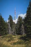 Torre dell'allerta sulla collina Fotografia Stock Libera da Diritti
