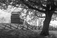 Torre dell'allerta sulla montagna della marmotta - Ridge Parkway blu, la Virginia, U.S.A. Immagini Stock