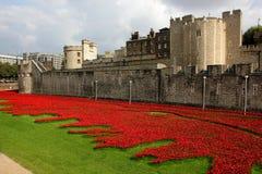 Torre dell'esposizione commemorativa del papavero di Londra fotografia stock
