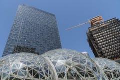 Torre dell'ufficio di Amazon Immagini Stock Libere da Diritti