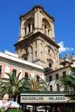 Torre della cattedrale di Granada, Spagna Fotografia Stock Libera da Diritti