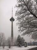 Torre della televisione di Vilnius Fotografia Stock Libera da Diritti
