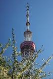 Torre della TV a Kiev Fotografia Stock