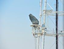 Torre di antenna del ripetitore di comunicazione del telefono cellulare in cielo blu fotografia stock