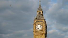 Torre di Big Ben a Londra con il cielo drammatico nel fondo stock footage