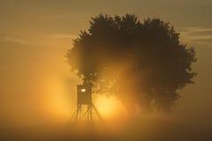Torre di caccia Immagine Stock
