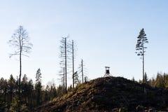 Torre di caccia nel legno Fotografie Stock Libere da Diritti