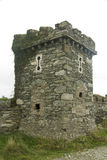 Torre di follia, convertita in portapillole con le scappatoie Fotografia Stock