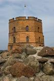 Torre di Gediminas sulla collina del castello a Vilnius, Lituania Fotografie Stock