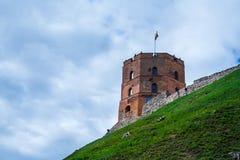 Torre di Gedimino a Vilnius, Lituania Fotografia Stock Libera da Diritti