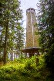 Torre di legno dell'allerta nella foresta Immagini Stock